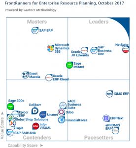 NetSuite ERP Leader