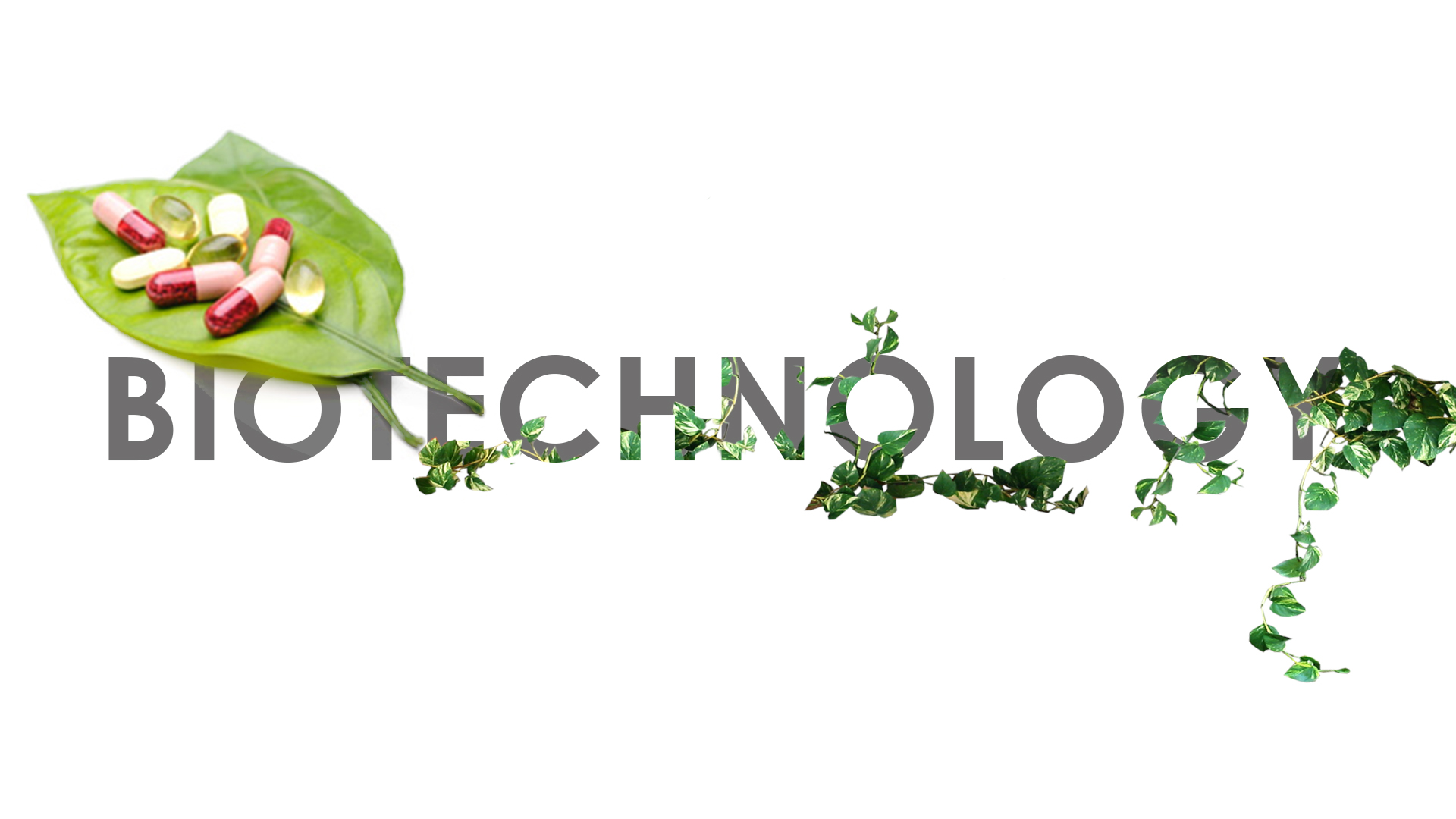 Cofficient are experts in ERP software for Biotech