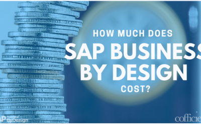 How Much Does SAP Business ByDesign Cost?