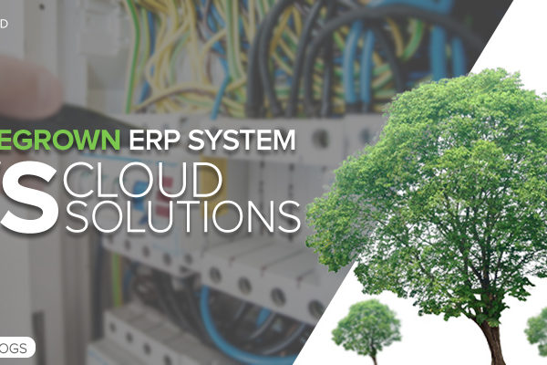 homegrown erp system