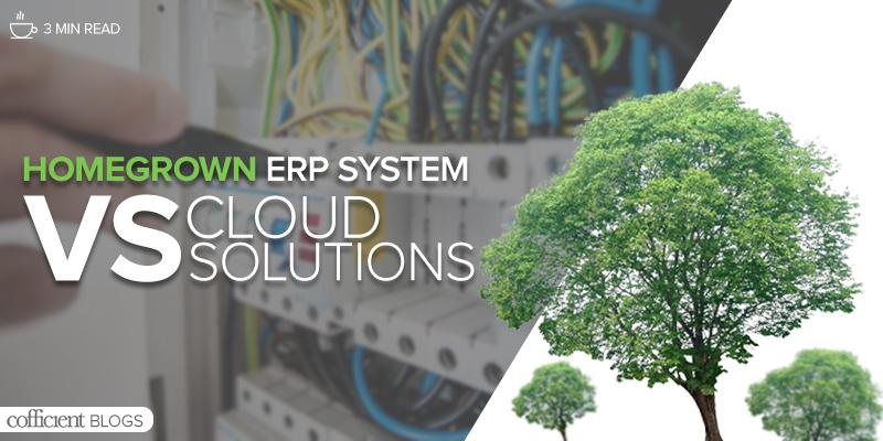 homegrown erp system