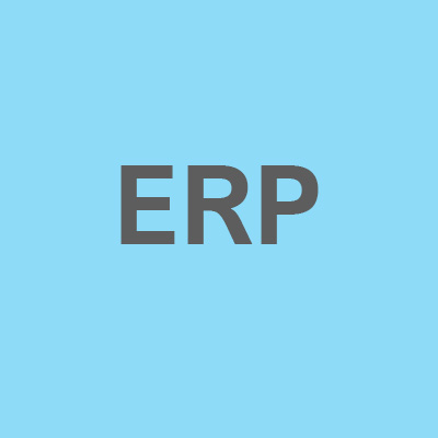business software ERP